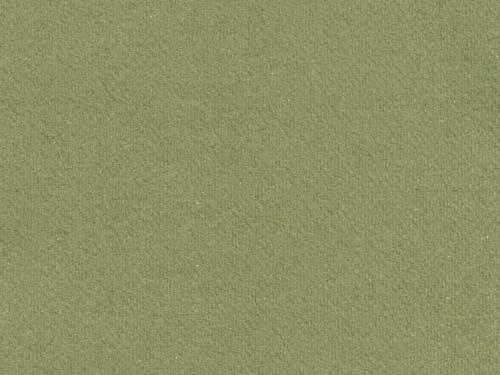 Melton colour 12 Grass