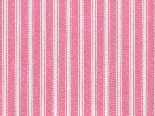 Ticking Stripe colour 05 Begonia